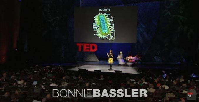 bonnie-brassler-ted-talk